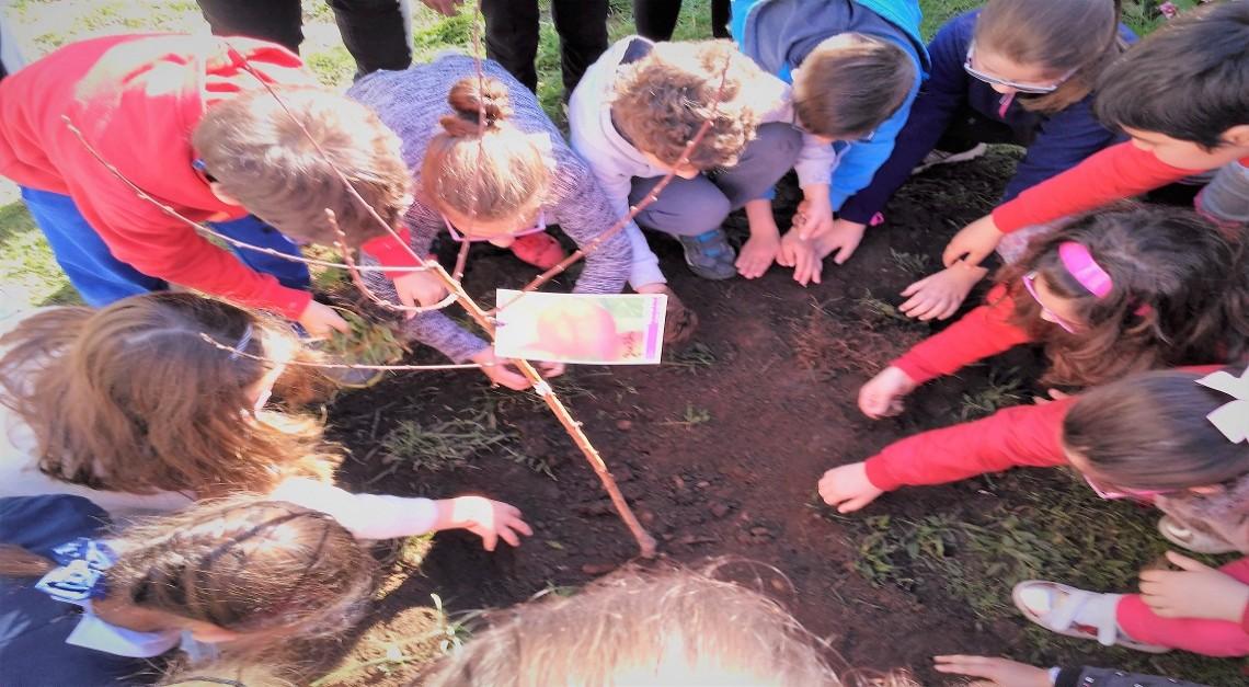 SEMANA ECO ESCOLAS reforça apego das crianças ao Meio Ambiente